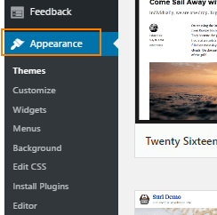 wordpress appearance option