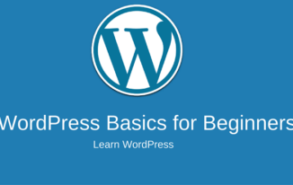 WordPress Basic Guide for Beginners (Startup Guide)