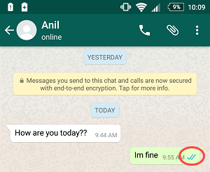 whatsapp blue tick