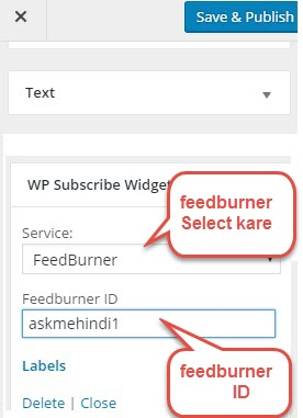 wp subscribe setup
