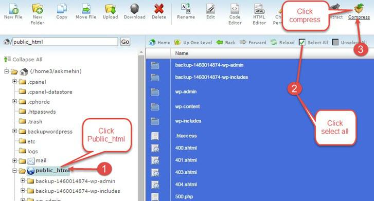 file manager public_html