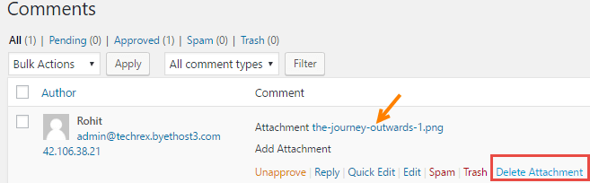 wordpress comment approve
