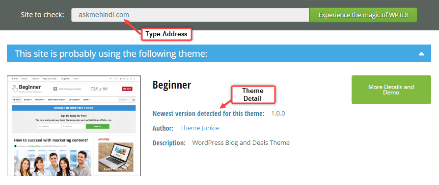 check detect wordpress theme any site
